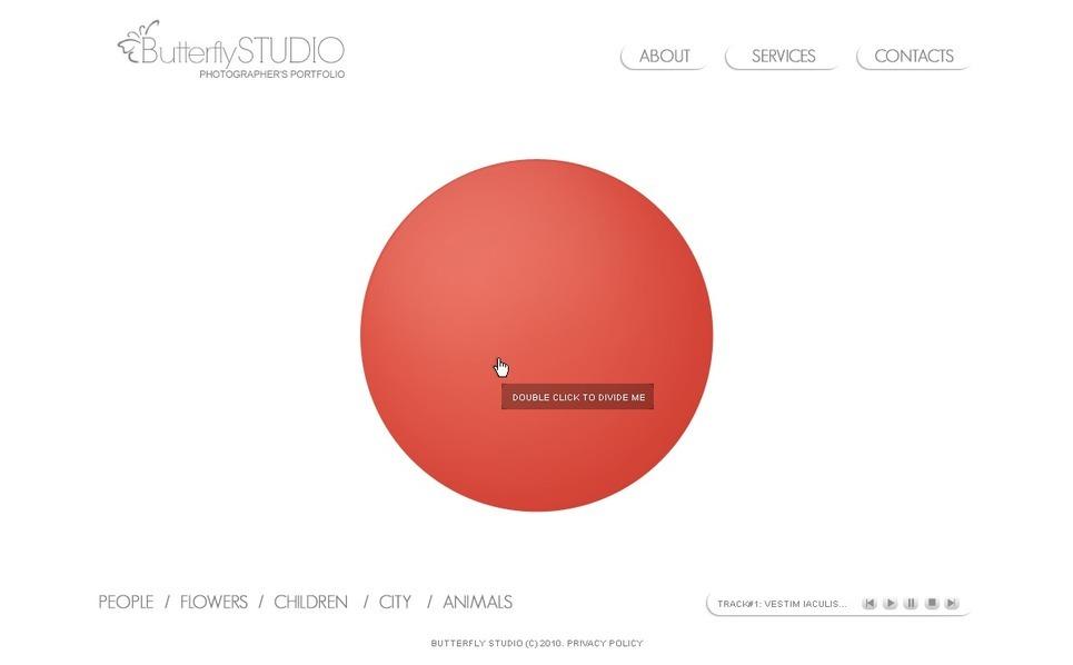 Szablon Flash CMS #31475 na temat: portfolio fotograficzne New Screenshots BIG