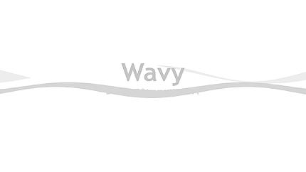 Logo Animé After Effects pour site d'affaires et de services #31506