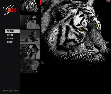 ADOBE Photoshop Template 31671 Home Page Screenshot