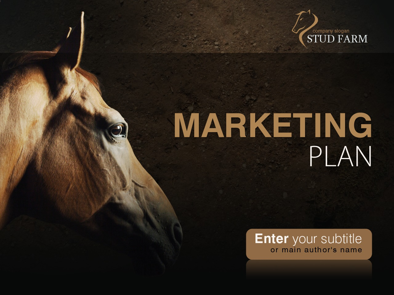 horse powerpoint template 31928