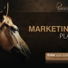 Powerpoint templates dogs template monster horse powerpoint template dogs toneelgroepblik