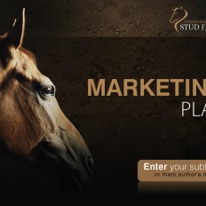 Powerpoint templates dogs template monster horse powerpoint template dogs toneelgroepblik Choice Image