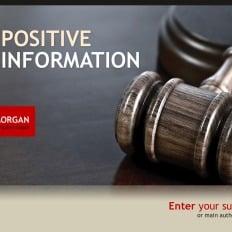 Template powerpoint para sites de advogado 28325 lawyer template powerpoint 32099 toneelgroepblik Choice Image