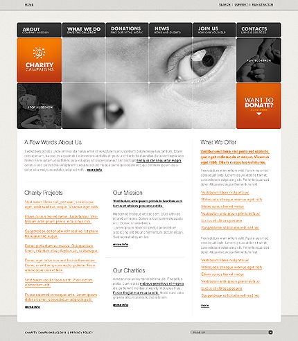 Template 32558 ( What we do Page ) ADOBE Photoshop Screenshot