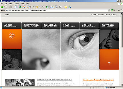 Template 32558 ( Donations Page ) HTML Screenshot