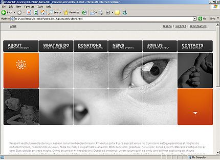 Template 32558 ( Privacy Policy Page ) HTML Screenshot