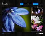 Flowers Flash CMS  Template 32560