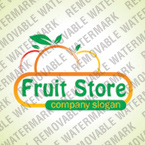 Store Natural Logotype Template (cdr 12 Psd) 33027