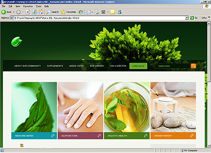 Template 33365 ( Contacts Page ) HTML Screenshot