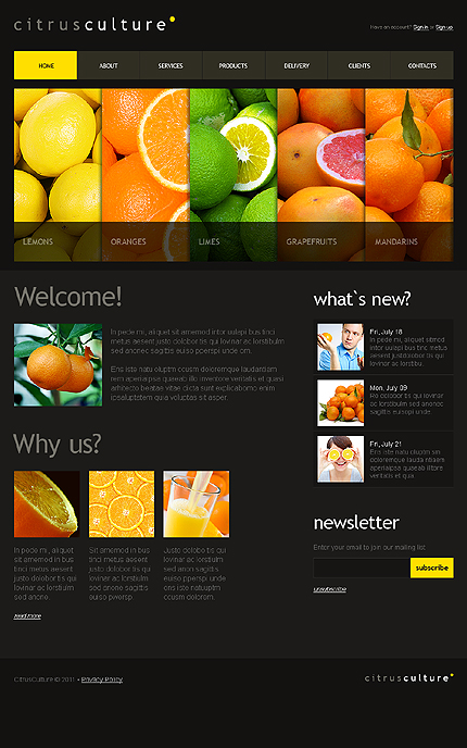 Drupal Template 33548 Main Page Screenshot