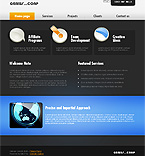 Turnkey Websites 2.0 Template 33716