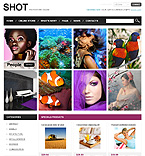 Art & Photography VirtueMart  Template 34103