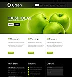 Turnkey Websites 2.0 Template 34383