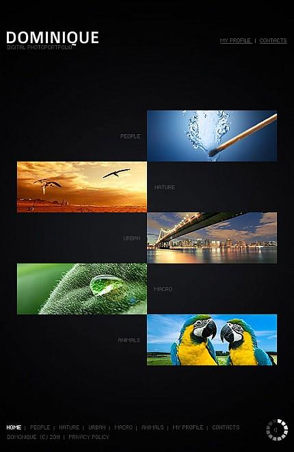 ADOBE Photoshop Template 34446 Home Page Screenshot