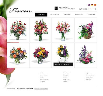 osCommerce Template 34523 Main Page Screenshot