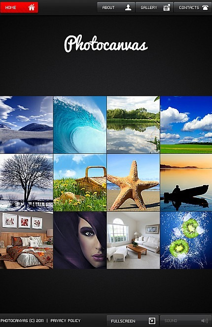 Photo Gallery Facebook Flash CMS Template Facebook Screenshot