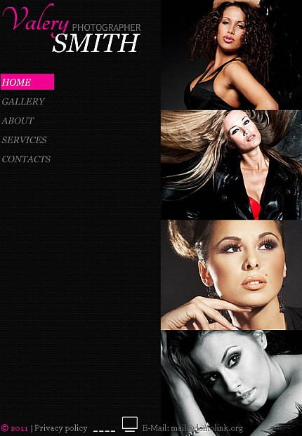 ADOBE Photoshop Template 35628 Home Page Screenshot