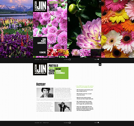 ADOBE Photoshop Template 35842 Home Page Screenshot