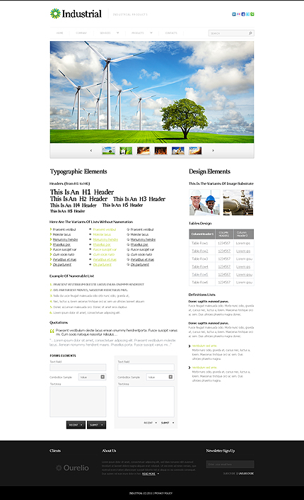 ADOBE Photoshop Template 35931 Home Page Screenshot