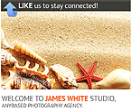 Art & Photography Facebook  Template 36393