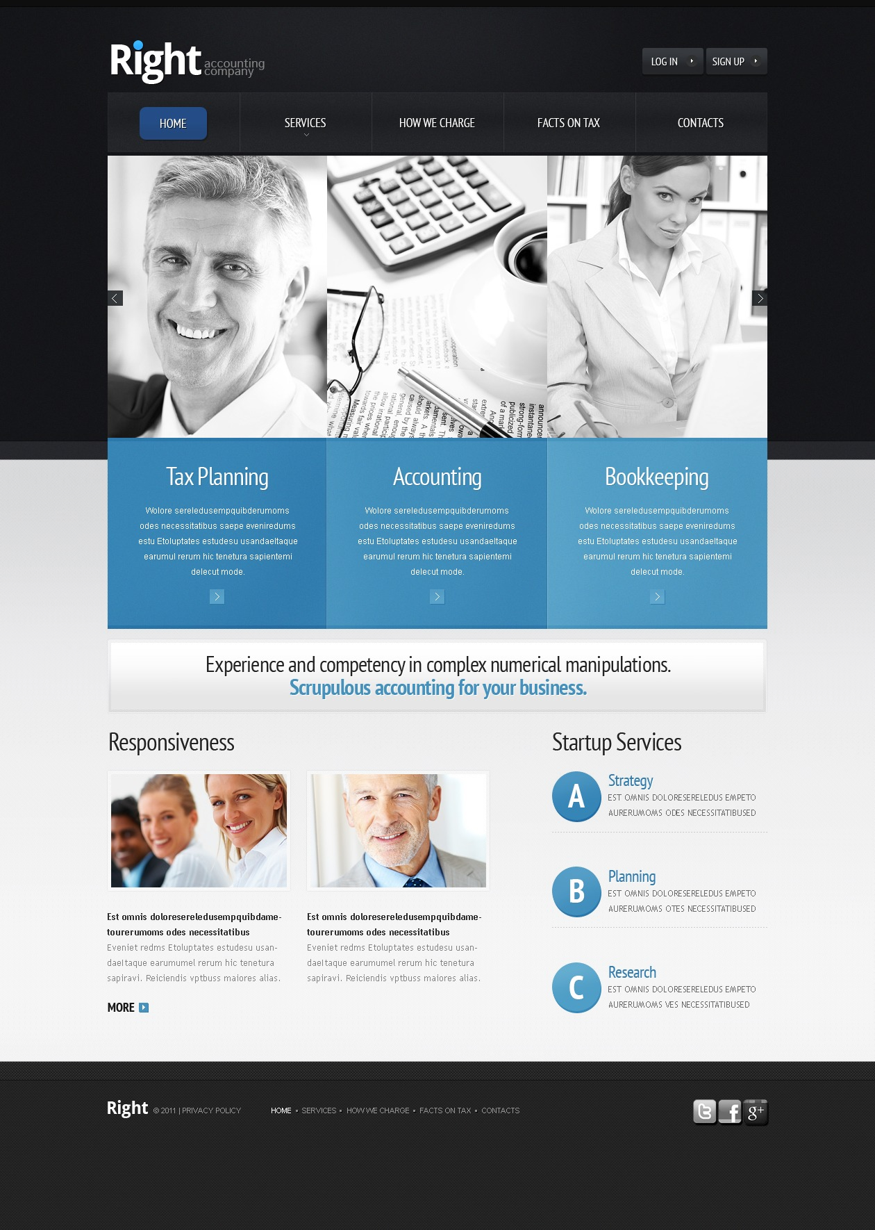 accounting website website template 36646