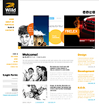 Web design Drupal  Template 36701