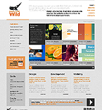 Web design Website  Template 37022