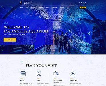 Underwater Life Aquarium