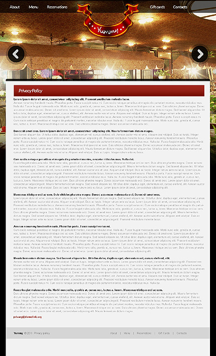 Template 37110 ( Privacy Policy Page ) ADOBE Photoshop Screenshot