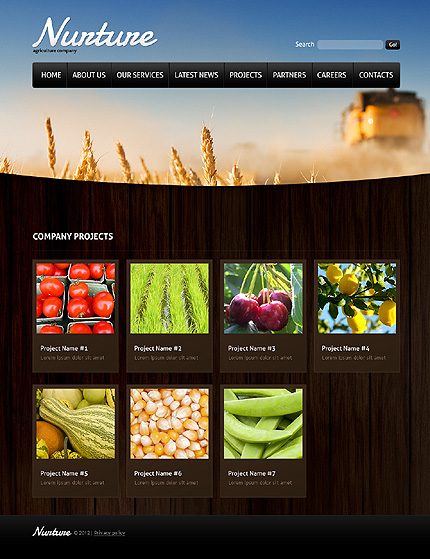 Template 37133 ( Projects Page ) ADOBE Photoshop Screenshot