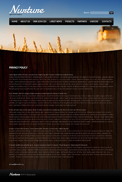 Template 37133 ( Privacy Policy Page ) ADOBE Photoshop Screenshot