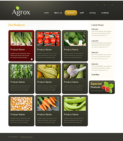 Template 37198 ( Product Page ) ADOBE Photoshop Screenshot