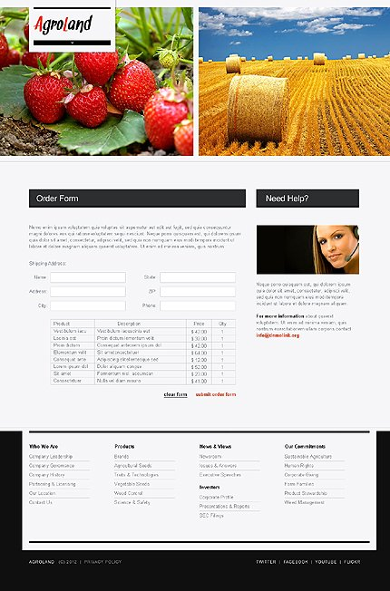 Template 37230 ( Order Form Page ) ADOBE Photoshop Screenshot