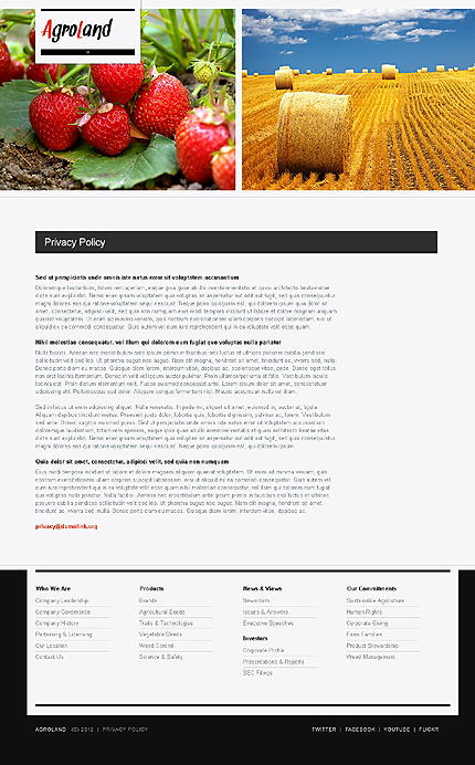 Template 37230 ( Privacy Policy Page ) ADOBE Photoshop Screenshot
