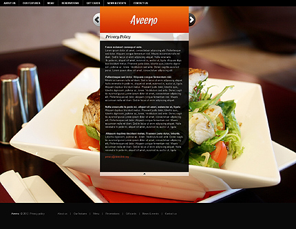 Template 37260 ( Privacy Policy Page ) ADOBE Photoshop Screenshot