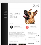 Animals & Pets Drupal  Template 37289