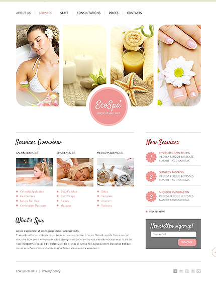 Template 37501 ( Services Page ) ADOBE Photoshop Screenshot