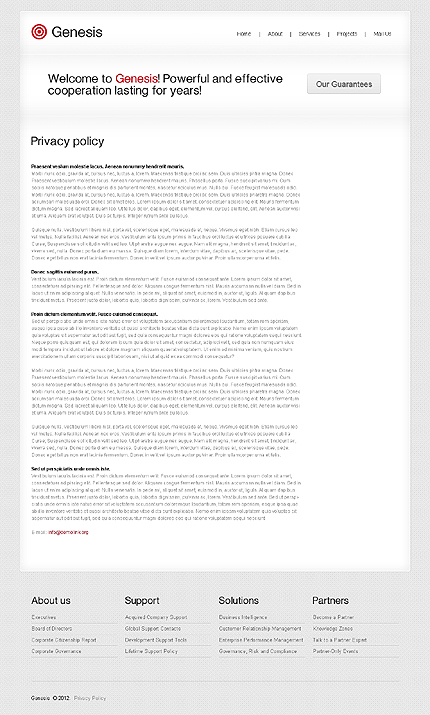 Template 37539 ( Privacy Policy Page ) ADOBE Photoshop Screenshot