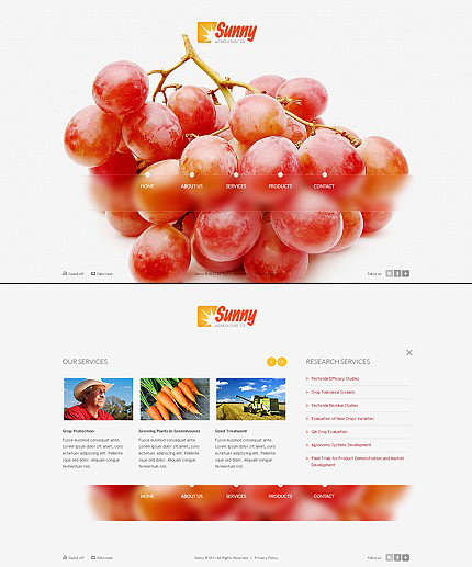 ADOBE Photoshop Template 37678 Home Page Screenshot