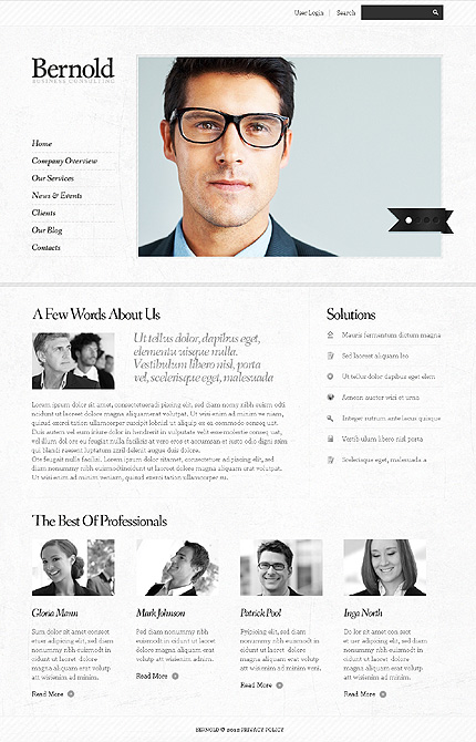 Template 37702 ( Company Overview Page ) ADOBE Photoshop Screenshot