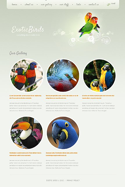 Template 37773 ( Our gallery Page ) ADOBE Photoshop Screenshot