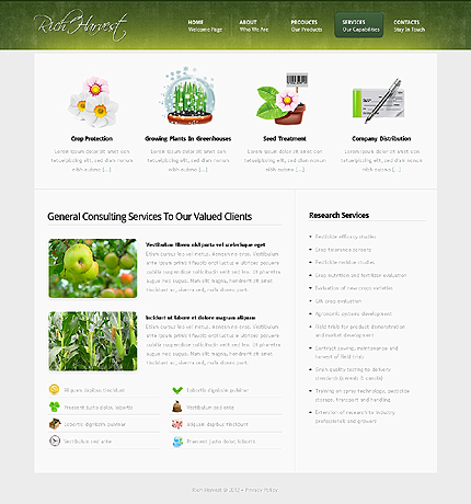Template 37851 ( Services Page ) ADOBE Photoshop Screenshot