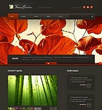 Website  Template 37958