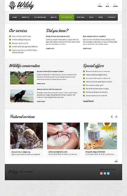 Template 38093 ( Our services Page ) ADOBE Photoshop Screenshot