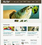 Sport Website  Template 38094
