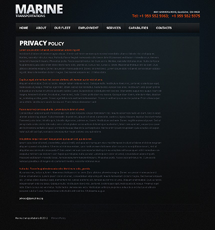 Template 38205 ( Privacy Policy Page ) ADOBE Photoshop Screenshot