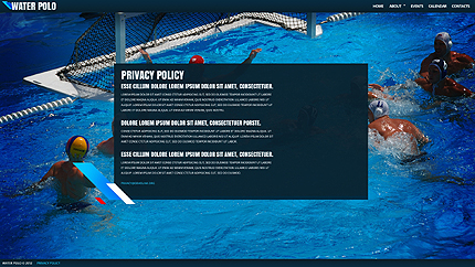 Template 38229 ( Privacy Policy Page ) ADOBE Photoshop Screenshot