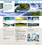 Website  Template 38266