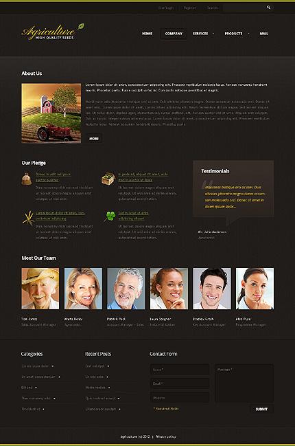 Template 38336 ( Company Page ) ADOBE Photoshop Screenshot