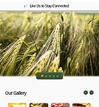 Agriculture Facebook  Template 38343